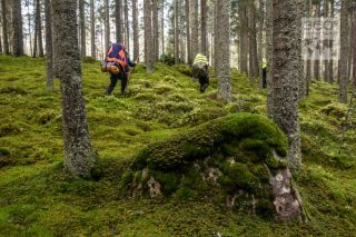 360-Photography-Schweden-IWV-4388