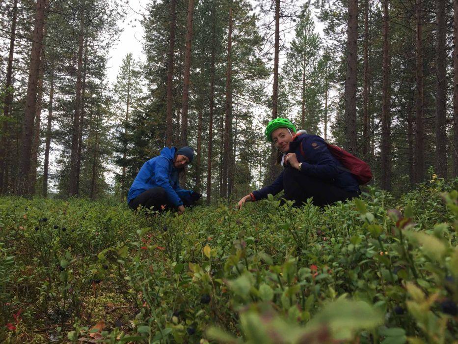 015 Bikeride and blueberries in the woods of Rovaniemi